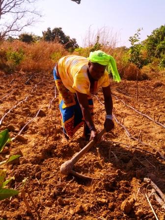 Bamako   The Invisible Humanitarian